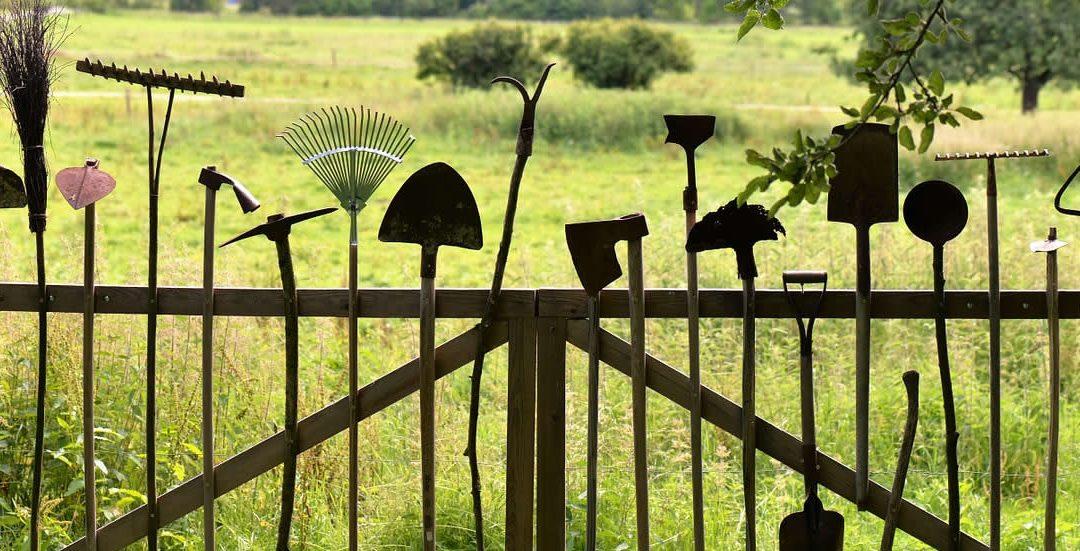 Garden Clearance FAQs