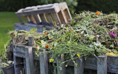 It's time to prepare your garden for winter